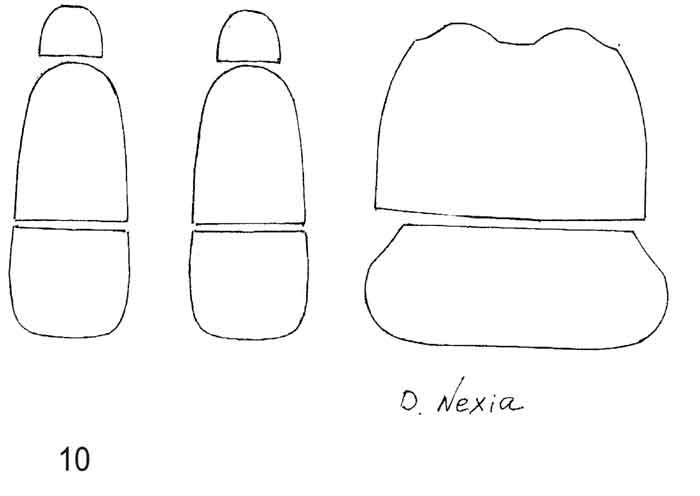 Как произвести установку автомобильных чехлов